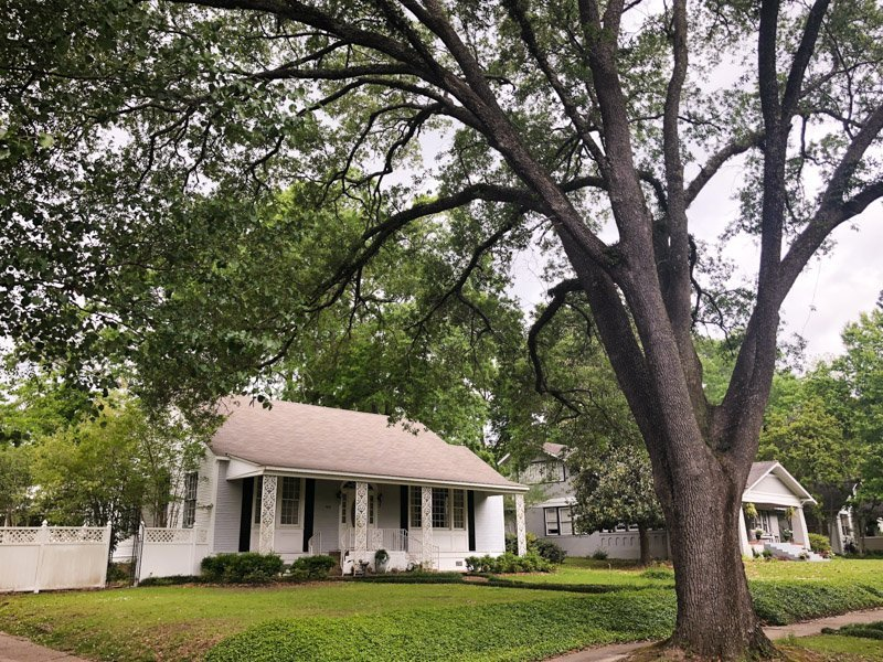 Houses for sale laurel ms